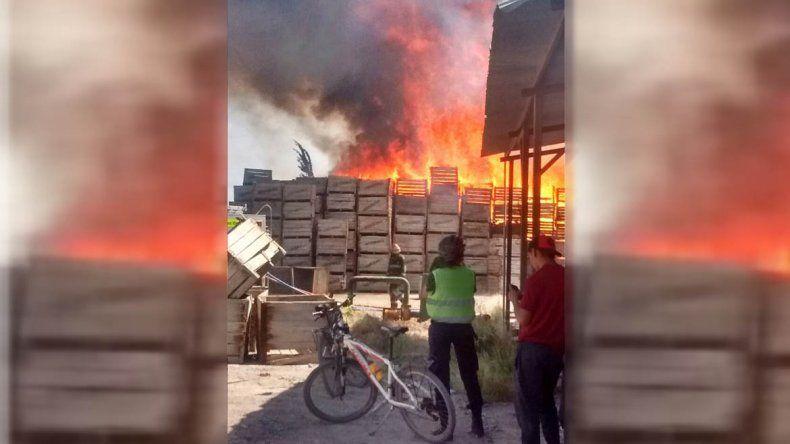 Un incendio consumió bins en un galpón de Fernández Oro