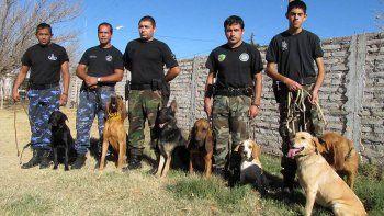 Perros de la Policía ayudan en la investigación por un asesinato