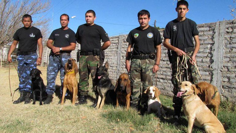 Hoy comienza el entrenamiento de la Policía Federal con perros antidrogas