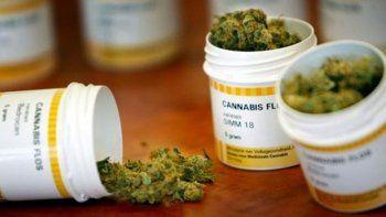 La marihuana medicinal está reconocida por una ley nacional, pero la Provincia aún no adhirió.