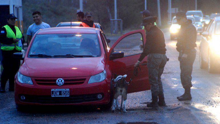 En los operativos preventivos es habitual la utilización de perros.