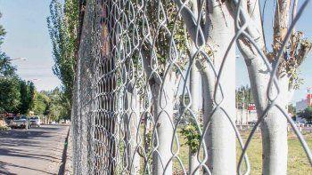 Como en El Manzanar, están poniendo un cerco perimetral.