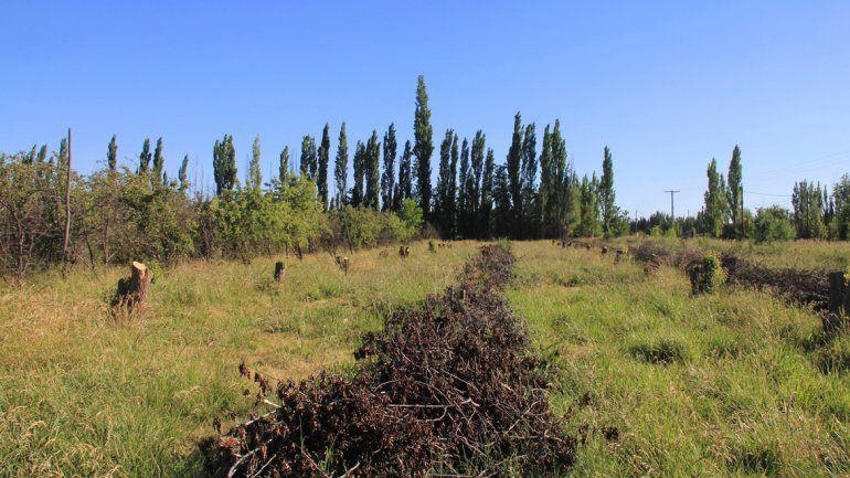 En la ciudad hay grandes extensiones rurales que parecen ser inviables.