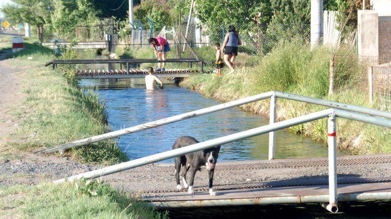 Bañarse en los canales de riego es ya una costumbre en Cipolletti.
