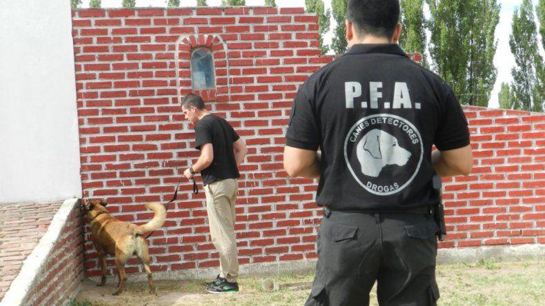 Se trabajó en forma intensa con los perros y se aplicaron diversos métodos.