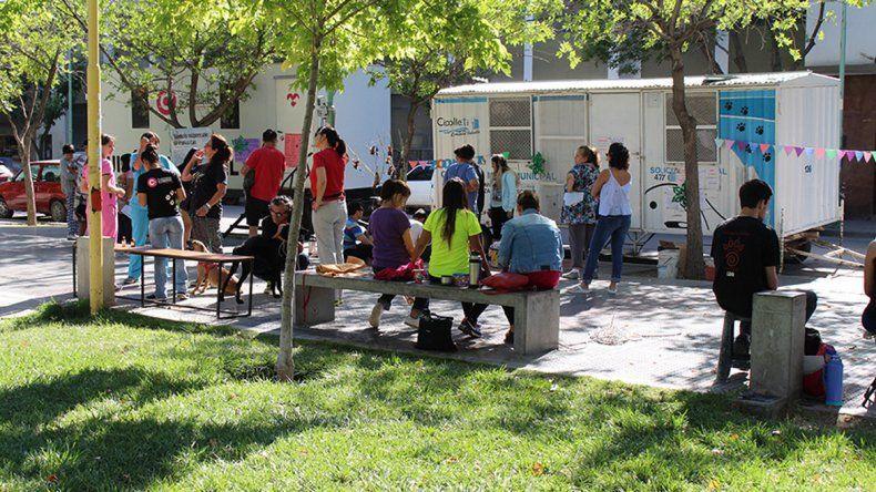Los veterinarios de la Muni entregan hasta 25 turnos por jornada.