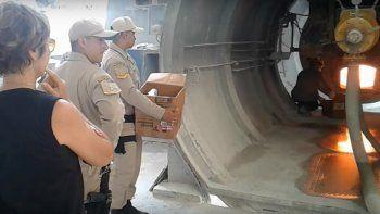 Quemaron 145 kilos de marihuana y medio kilo de cocaína en Viedma