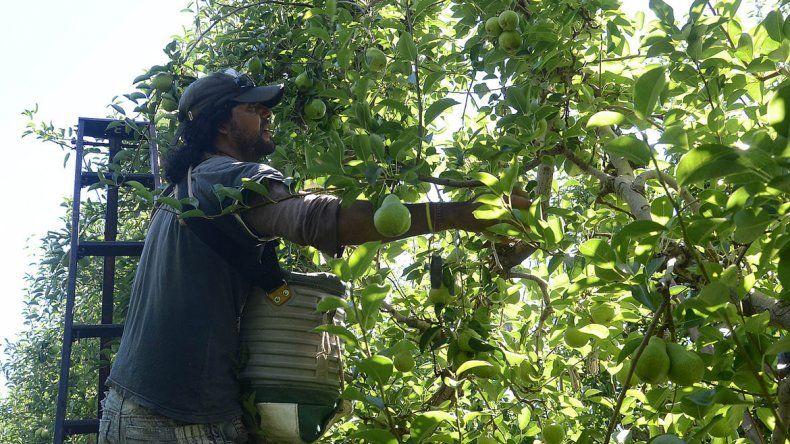 La postergación de vencimientos ayudará a afrontar la cosecha.