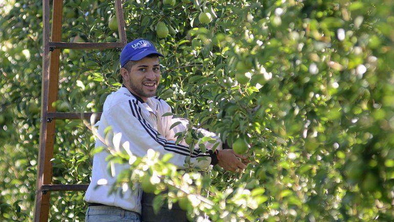 UATRE acordó el aumento salarial por la cosecha