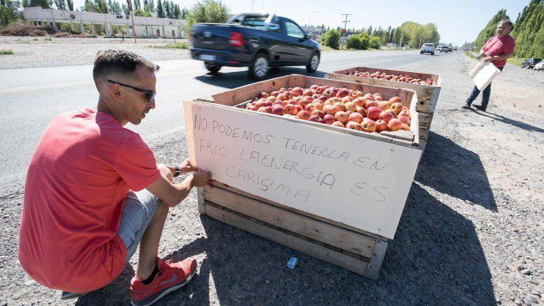 Chacareros tirarán más de 50 mil kilos de fruta en la rotonda de Cipolletti