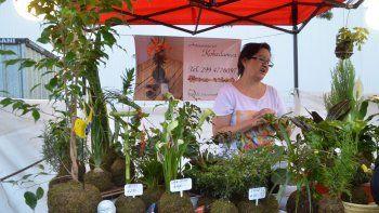 María Teresa vende las kokedamas en la feria de emprendedores organizada por el Municipio.