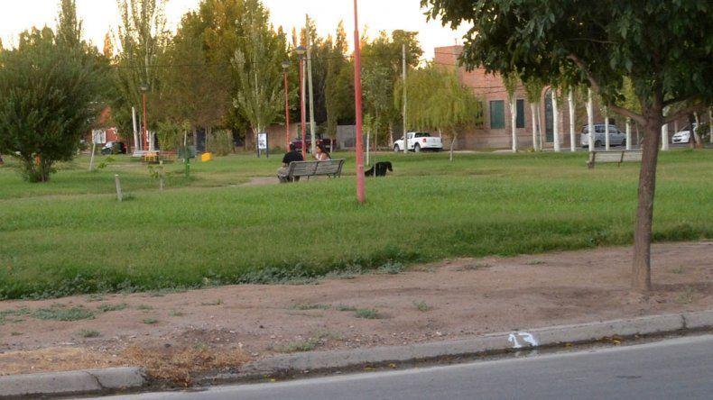 En el Municipio y entre los vecinos se teme que hayan arrojado algún tipo de veneno en la plaza del barrio. Podría tratarse de una persona muy malvada.