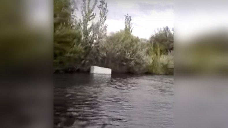 Navegaban por el río Negro y realizaron un hallazgo insólito