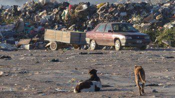El Municipio debe construir una planta separadora de residuos para poder después llevar los desechos hacia Neuquén. Necesita financiamiento.