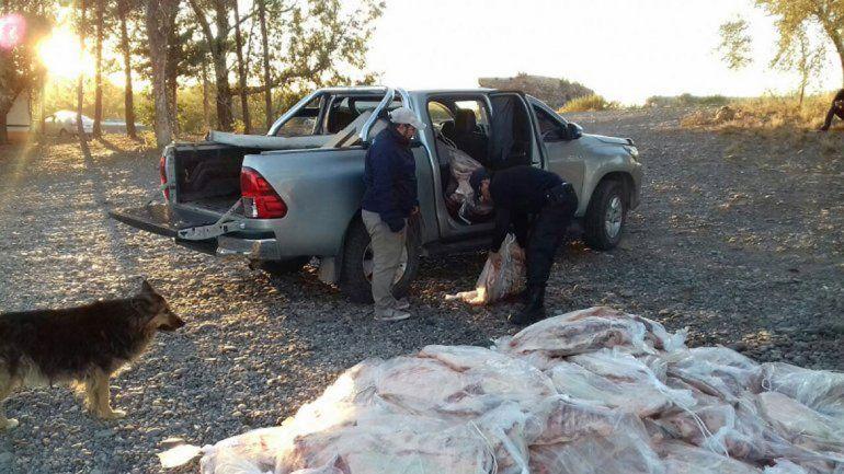 La Policía Caminera decomisó 85 costillares en Catriel.