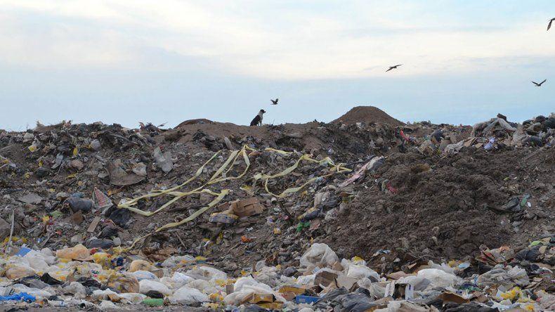 Nuevo plan para el basural: enterrar los desperdicios