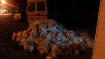 decomisaron mas de una tonelada y media de carne ilegal adentro de una trafic