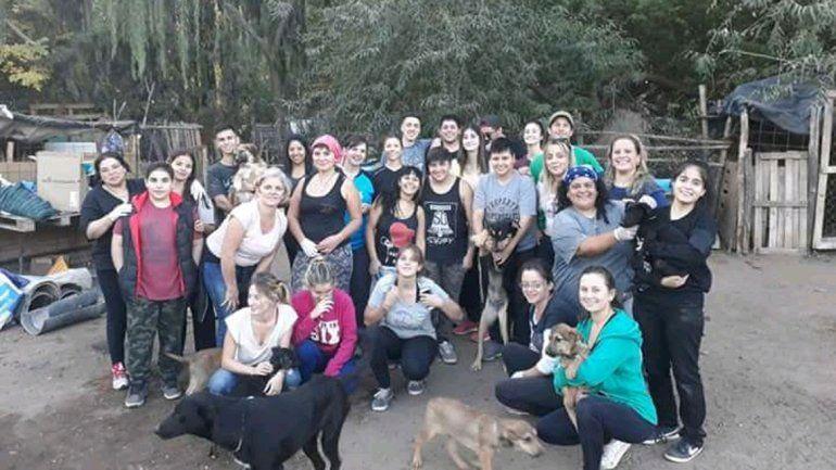 Los voluntarios se unen para mejorar la vida de los perros del refugio.