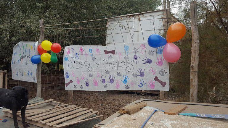 En la Isla Jordán festejaron el Día del Animal a pleno