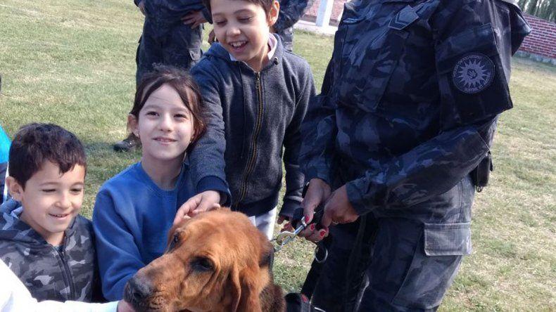 Ayke falleció por un problema de salud común en los perros de su raza.