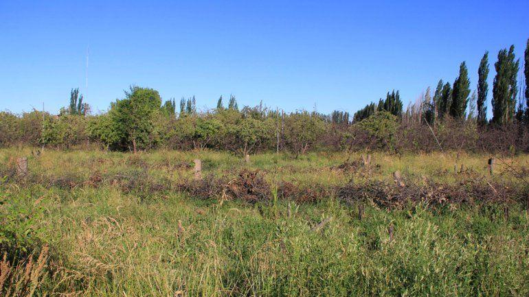 En la zona norte hay mucha tierra disponible para solucionar gran parte del problema habitacional y también dar cabida a la producción de las pymes.