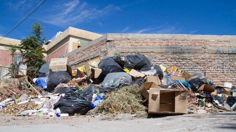 Cipolletti enviará 30 toneladas de basura por día hacia Neuquén.