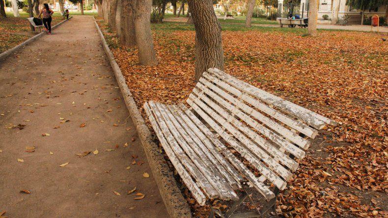 Cipolletti se luce bajo el manto del otoño