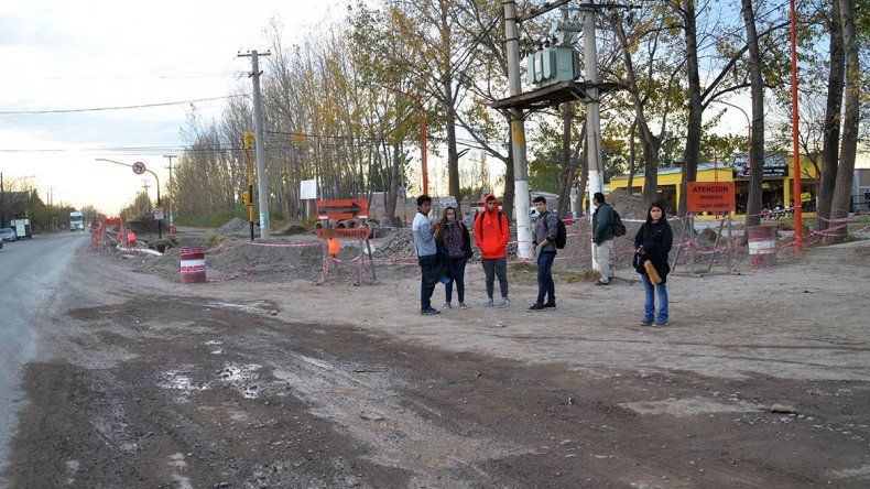 Los colectivos llegarán hasta el campus de la UNCo