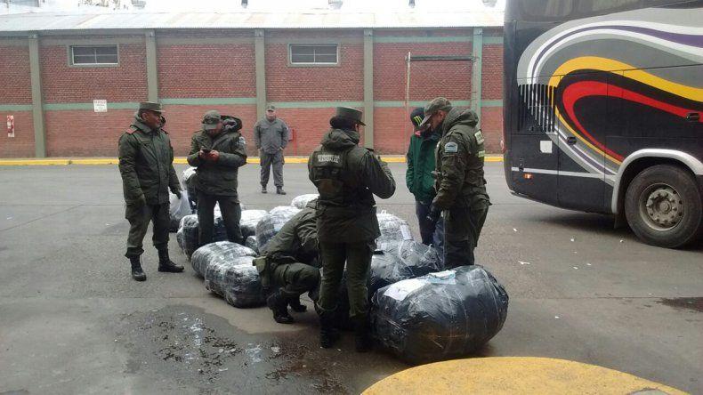 Secuestraron 20 bolsones sospechosos en la terminal de ómnibus de Cipolletti
