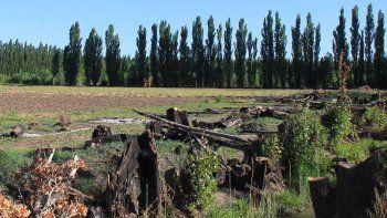 Municipio, productores y regantes lucharán a favor de la zona rural.