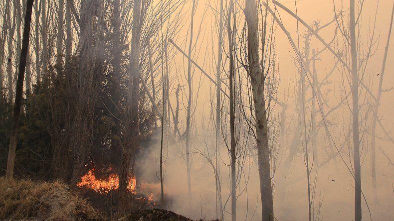 El fuego y el viento causaron estragos en la zona rural