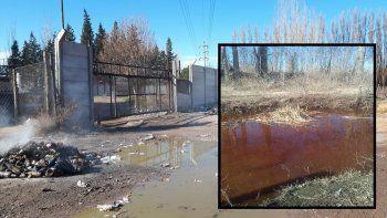 Volvió la polémica: los vecinos se quejan por la mugre y el olor en el Canal de los Milicos