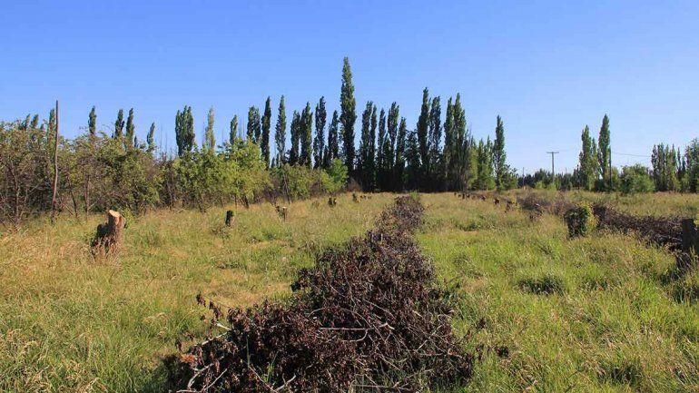 Aún siguen vigentes las ordenanzas que multan las tierras sin producir.