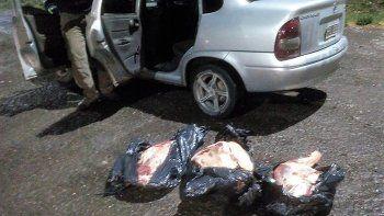 Decomisan gran cargamento de carne y limones ilegales