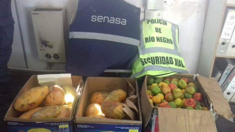 Secuestraron 80 kilos de frutas exóticas que venían a Cipolletti