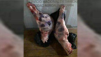 decomisaron carne ilegal en un procedimiento en ruta 151