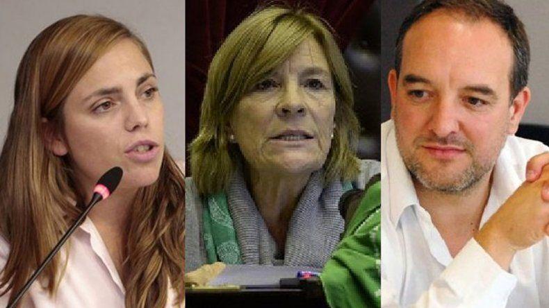 Mirá qué dijeron los diputados rionegrinos sobre el Presupuesto