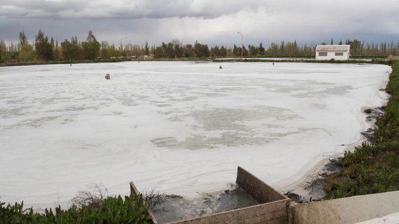 La Provincia usa el agua de cloacas para riego