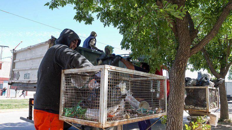 Arrancará la separación de la basura en la ciudad
