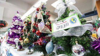 el pinito navideno no se salvo de la inflacion de precios