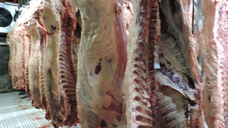 Las exportaciones de carne vacuna rionegrina hacia China aumentaron en los primeros meses del año.