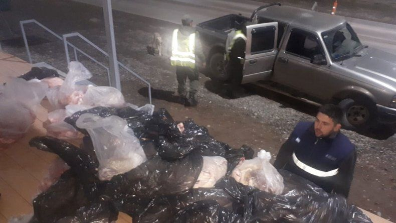 Secuestraron 347 kilos de carne ilegal que venía a Cipolletti