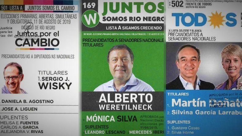 Mirá todos los candidatos que habrá en Río Negro para las PASO