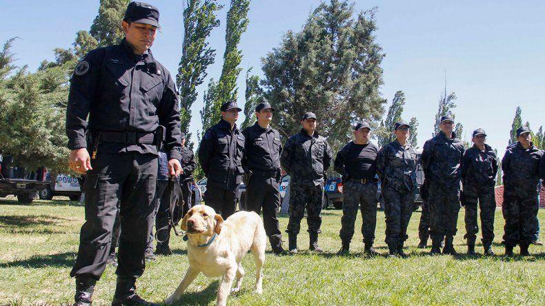 Entrenan a perros antinarcóticos de toda la Patagonia