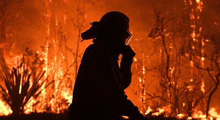 Australia arrancó el Año Nuevo en llamas