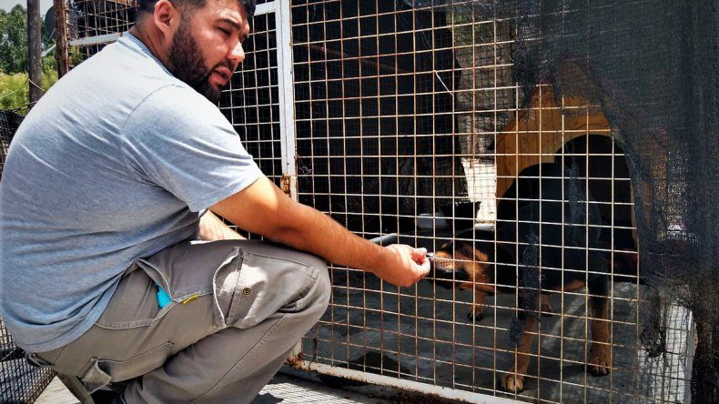 Le buscan un dueño responsable al perro que terminó en un calabozo por morder