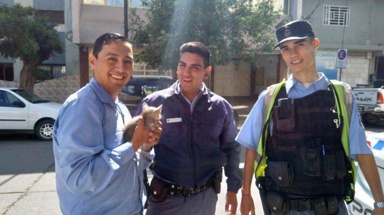 Policías héroes rescataron a una gatita atrapada en el motor de un auto