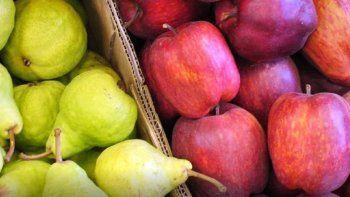 Chacareros llevan peras y manzanas a la costa