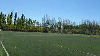 evaluan aprobar entrenamientos funcionales para los futboleros