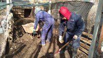 el municipio arranco con tareas de mejoras en la guarderia canina
